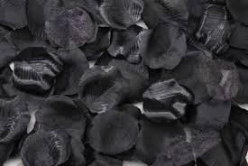 blackrosepetals