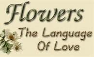 flowresthelanguageoflove