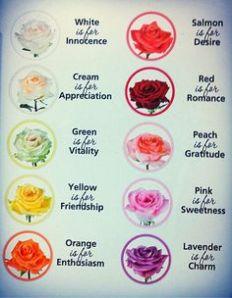 flowercolor